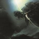 arbre-foudroye