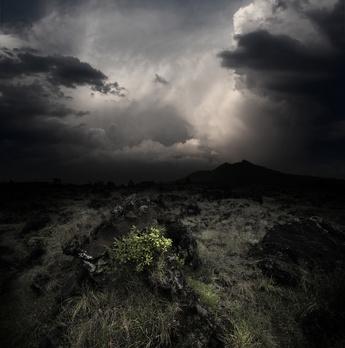 © Dudarev Mikhail – Fotolia.com