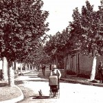 Miramas. Avenue de Saint-Chamas. Cliché Parraud.