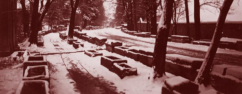 Les Alyscamps, à Arles, sous la neige. Vers 1930. DR.