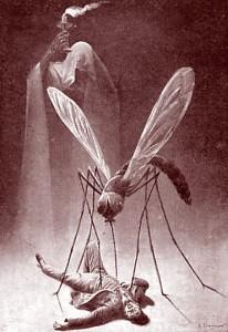 Dessin pour la prévention du paludisme. Ehrmann. Début XXe siècle. DR.